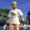 FFXI Let's go out with casual ware