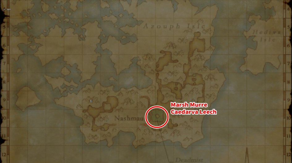 Leveling Map Caedarva Mire