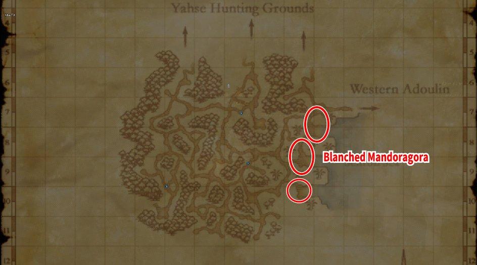 Leveling Map Ceizak Battlegrounds