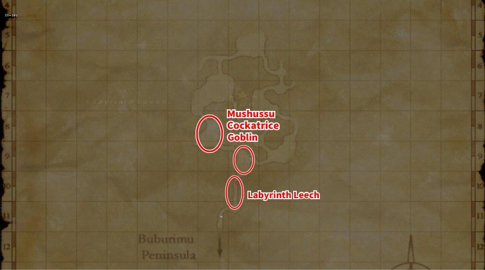 Leveling Map Labyrinth of Onzozo