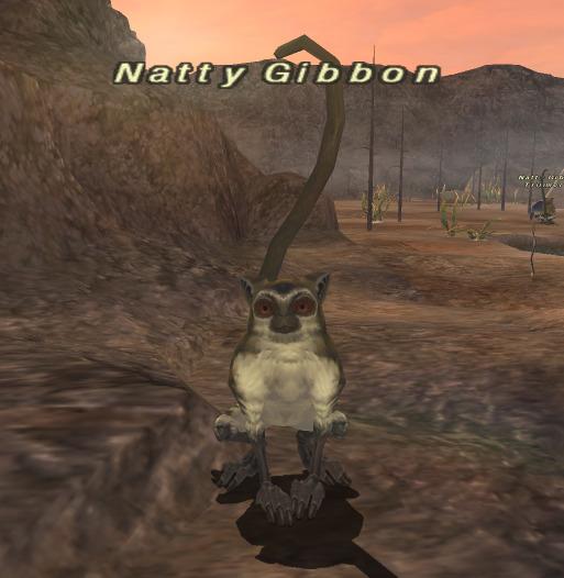 Natty Gibbon