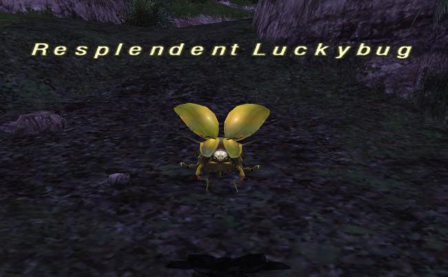 Luckybug