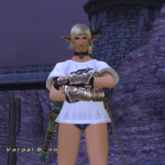 FFXI 17th Aniversary