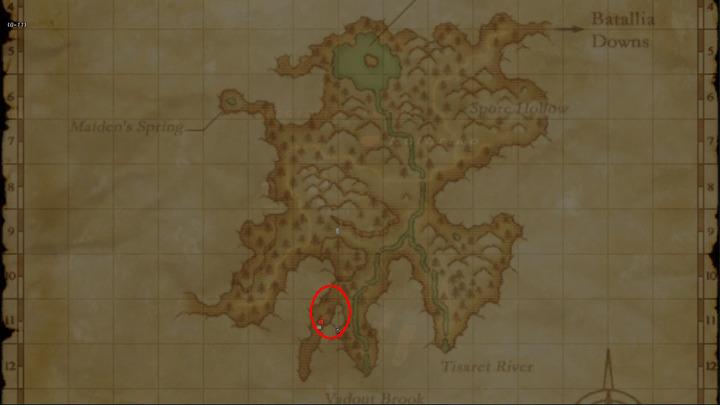 Learning Map Jugner Forrest{s}