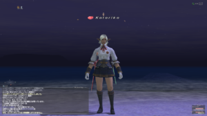 How to take screenshots for FFXI