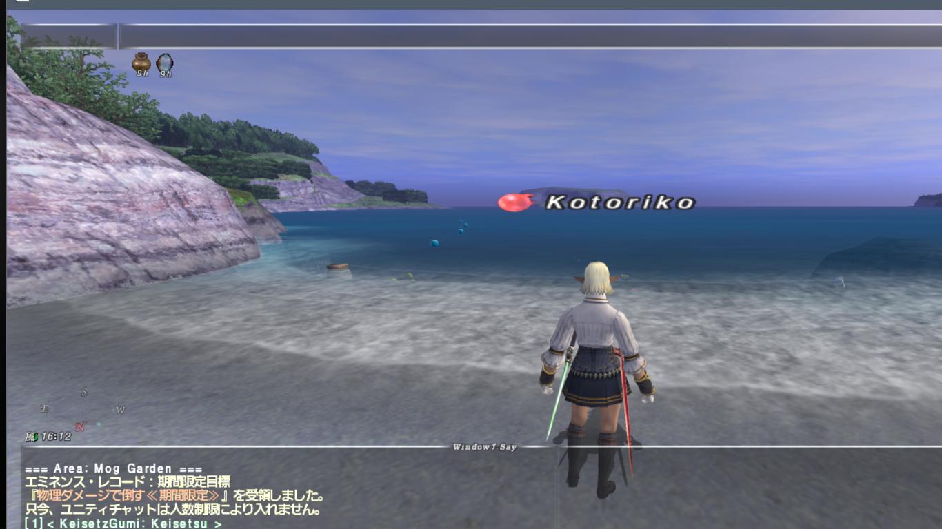 How to take screenshots for FFXI 020