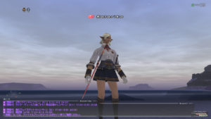 How to take screenshots for FFXI 024