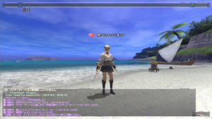 How to take screenshots for FFXI 028
