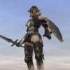 Origin of the Armor Equipment
